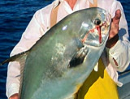 A fish caught on a fishing charter in the Florida Keys