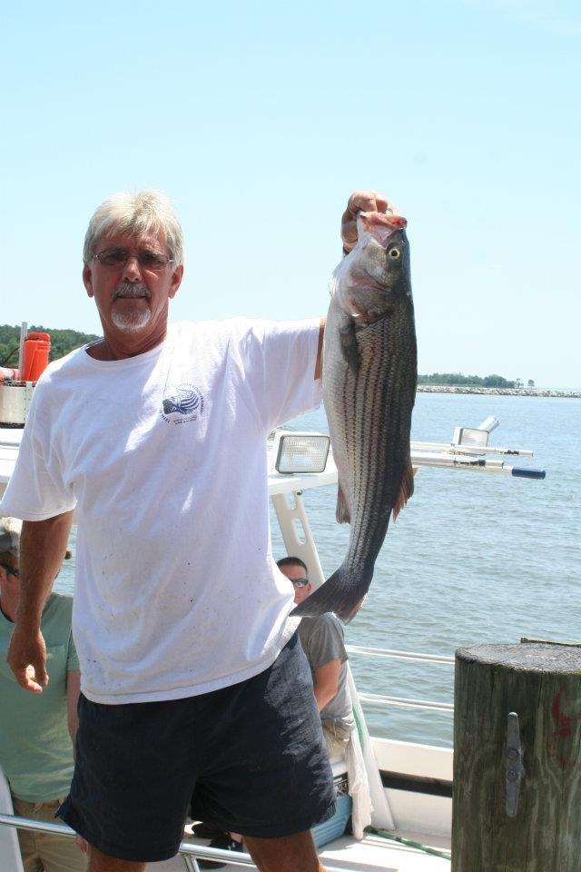Chesapeake bay fishing charters gatling guide service for Marathon key fishing charters